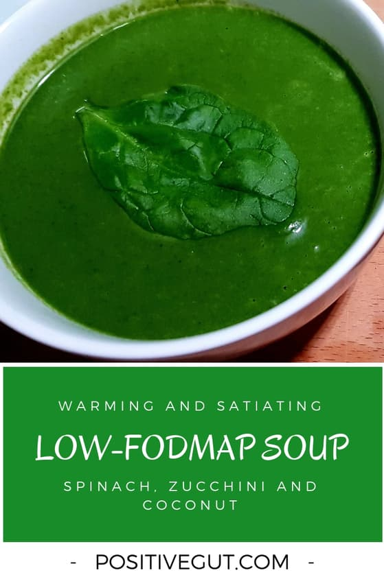 FODMAP Spinach Soup