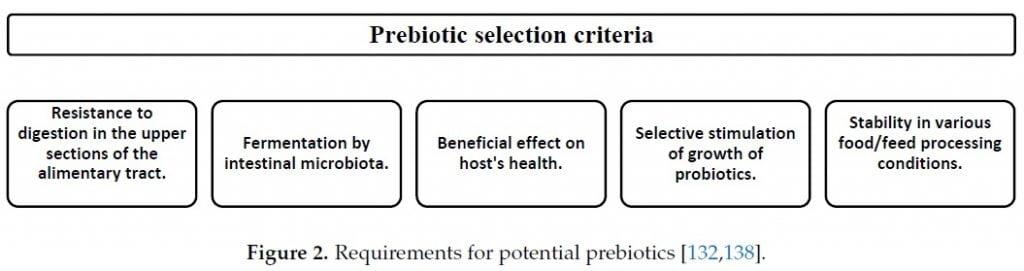 Prebiotic criteria