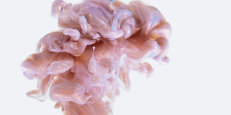 IBD: Crohn's Disease & Ulcerative Colitis