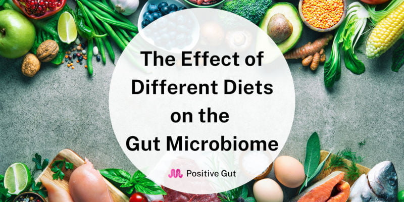 The Effect of Different Diets on The Gut Microbiome